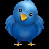 twitter hidden options