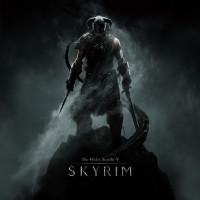 The Elder Scrolls V - Skyrim