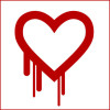 What Is The Heartbleed Bug 2