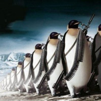 linux is ready